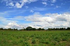 голубое небо зеленого цвета поля Стоковое Изображение RF