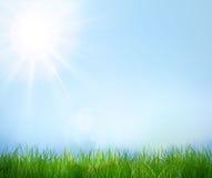 голубое небо зеленого цвета травы Предпосылка вектора Стоковое Изображение RF