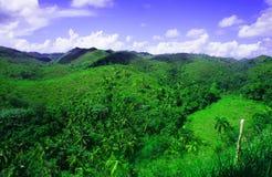 голубое небо зеленых холмов Стоковое Изображение