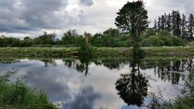Голубое небо и деревья отраженные на пруде Стоковое Изображение RF