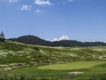 Голубое небо и зеленое поле стоковые изображения