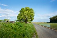 Голубое небо и дорога Стоковая Фотография RF