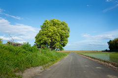 Голубое небо и дорога Стоковое Изображение RF