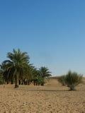 Голубое небо и пустыня Стоковые Изображения
