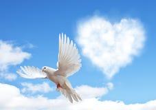 Голубое небо с сердцами формирует облака и голубя Стоковое фото RF