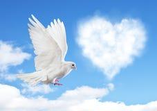 Голубое небо с сердцами формирует облака и голубя Стоковые Изображения