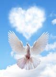 Голубое небо с сердцами формирует облака и голубя Стоковая Фотография