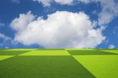 голубое небо травы поля Стоковое Изображение RF