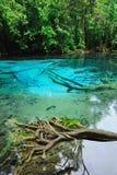 Голубое озеро в глубоком лесе Стоковые Фото