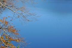 Голубое озеро, предпосылка воды с ветвью осени в foregro стоковое фото rf
