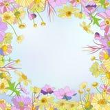 голубое приветствие конструкции карточки флористическое Стоковая Фотография