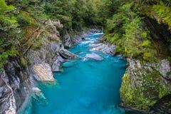 Голубое река в лесе, Новая Зеландия Стоковое Изображение RF