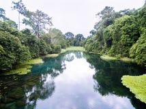 Голубое река/река Tulu/река Niari, Конго Стоковые Изображения