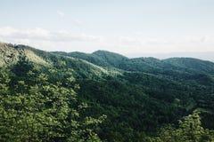 Голубое Ридж Mountians Стоковая Фотография
