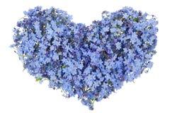 Голубое сердце нежного парня Стоковое Изображение
