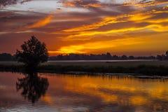 Голубое утро Стоковая Фотография