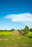 голубое яркое небо Стоковые Фото