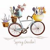 Голубое ful велосипеда и гончаров цветков крокуса тюльпаны красной весны сада цветков вишни близкие поднимают белизну Стоковое Изображение