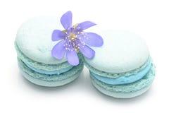 Голубое Macarons Стоковая Фотография
