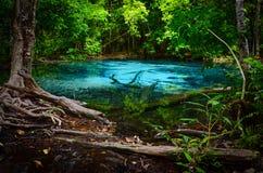 Голубой бассейн Стоковые Фото
