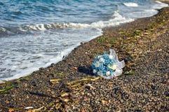 Голубой букет на скалистом пляже стоковая фотография rf