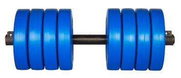 Голубой вес dumbells изолированный на белизне Стоковое Изображение RF
