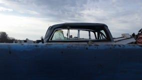 голубой взгляд Стоковые Изображения RF