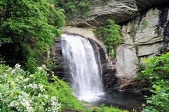 голубой водопад зиги Стоковое Фото