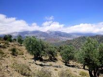 голубой город Крит расквартировывает море дороги ландшафта ведущее к типичной белизне Стоковое Фото