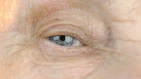 Голубой глаз средн-постаретой женщины конец вверх сток-видео