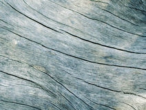 Голубой деревянный конец текстуры вверх по фото Белизна и предпосылка древесины teal Стоковая Фотография