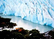 Голубой ледник на сером цвете Lago в национальном парке Torres del Paine Ледник на озере Стоковая Фотография RF
