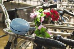 Голубой колокол Стоковое Изображение RF