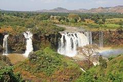 Голубой Нил падает, Bahar Dar, Эфиопия Стоковое Изображение RF
