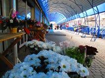 Голубой павильон, Kamenets Podolskiy, Украина Стоковые Фото