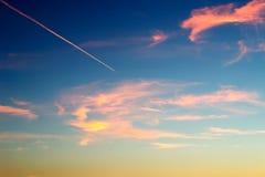 голубой помеец Стоковые Фото