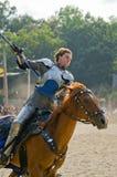 голубой рыцарь Стоковое фото RF