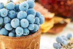 Голубой свежий Mahonia Стоковые Изображения RF