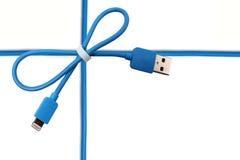 Голубой смычок USB кабеля Стоковое Изображение