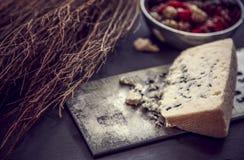 Голубой сыр Стоковое Изображение