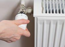 голубой тонизированный термостат радиатора Стоковое Фото