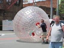 Голубой фестиваль сливы - езда внутри шарика Стоковая Фотография RF