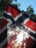 голубой флаг сделал норвежскую красную белизну вектора Стоковые Изображения