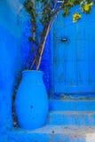 Голубой цветочный горшок Стоковые Изображения RF