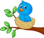 Голубой шарж птицы в гнезде Стоковые Изображения