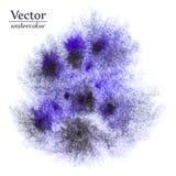 Голубые вектора абстрактные и черные помарки Яркие пятна дизайна чернил Стоковая Фотография RF
