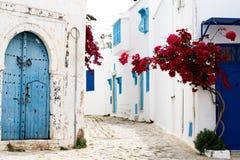 Голубые двери, окно и белая стена здания в Sidi Bou сказали Стоковые Изображения