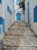 Голубые двери Sidi Bou сказали Тунис Стоковые Изображения