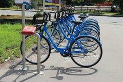 Голубые велосипеды на автостоянке велосипеда на солнечный день Стоковая Фотография