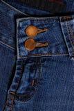 голубые джинсы предпосылки славные Муха и кнопка Стоковые Фотографии RF